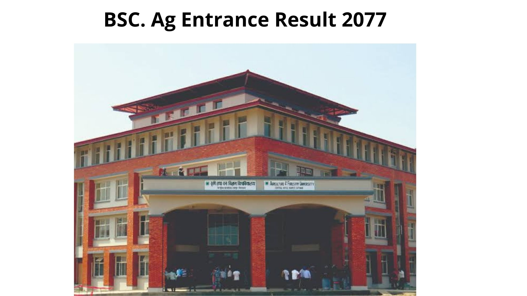 BSC Ag Entrance Result 2077, Agriculture and Forestry University