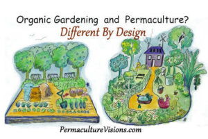 Permaculture, Sustainable Agriculture