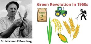 Advantages and disadvantages of green revolution