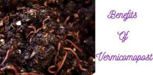 Benefits of vermicompost