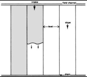 Border Strip Method Of Irrigation