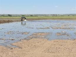 Flooding Method Of Irrigation